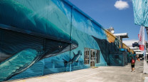 New Zealand's largest mural features a life-sized humpback whale