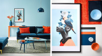 Create a complementary colour palette worthy of compliments photo