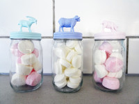 Create your own animal lolly jars