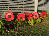 Make your own garden poppies