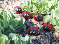 Get your kids painting with these golf ball ladybirds
